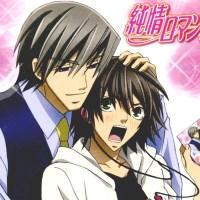 "Direncanakan project anime baru adaptasi dari BL manga ""Junjou Romantica"""