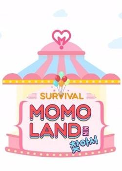Finding Momo Land