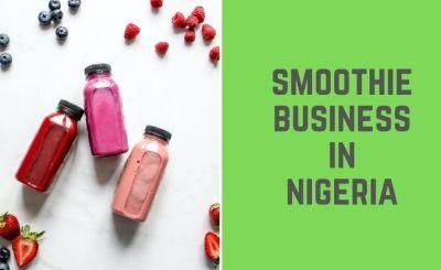 Smoothie Business in Nigeria