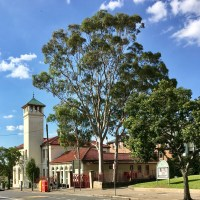 Leichhardt post office