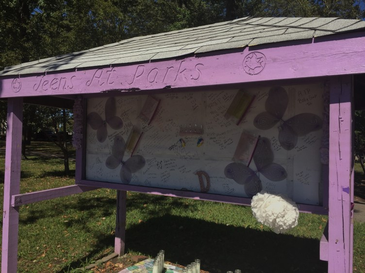 D'aja Robinson's memorial stands in Baisley Pond Park, meters away from the bus stop where Robinson was shot. (Santiago Arnaiz/The Ink)