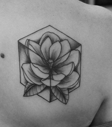 magnolia cube