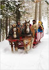 Horse-Drawn-Sleigh-Ride-Vermont
