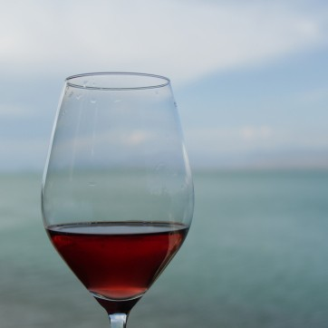 A glass of Rosé wine, Shkodra lake in the background.