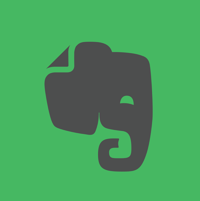 evernote notes the medici effect