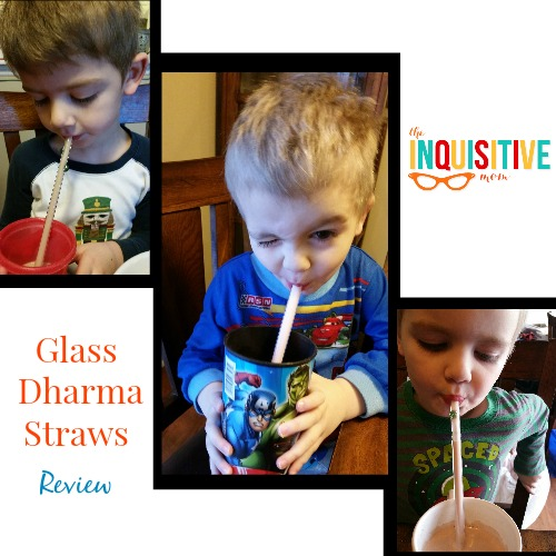 Glass Dharma Straws Review The Inquisitive Mom