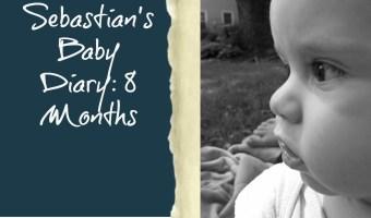 Sebastian's Baby Diary 8 Months