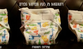 Imse Vimse AIO Cloth Diaper Review