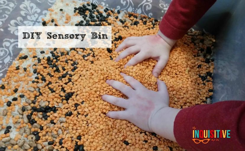 DIY Scensory Bin Step 1