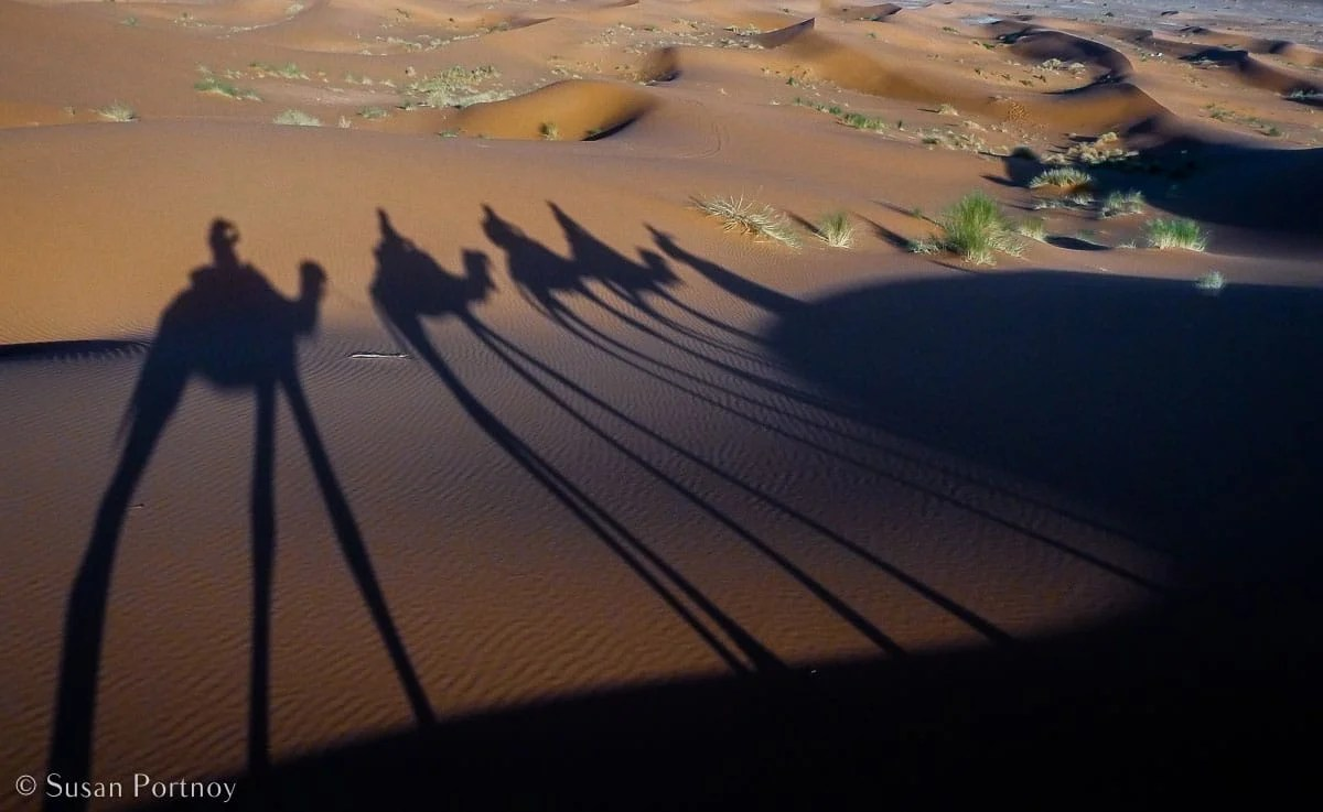 Stunning Silhouette Photos Guaranteed to Inspire Your Travels-Shadows of a camel caravan in the Sahara Desert, Morocco