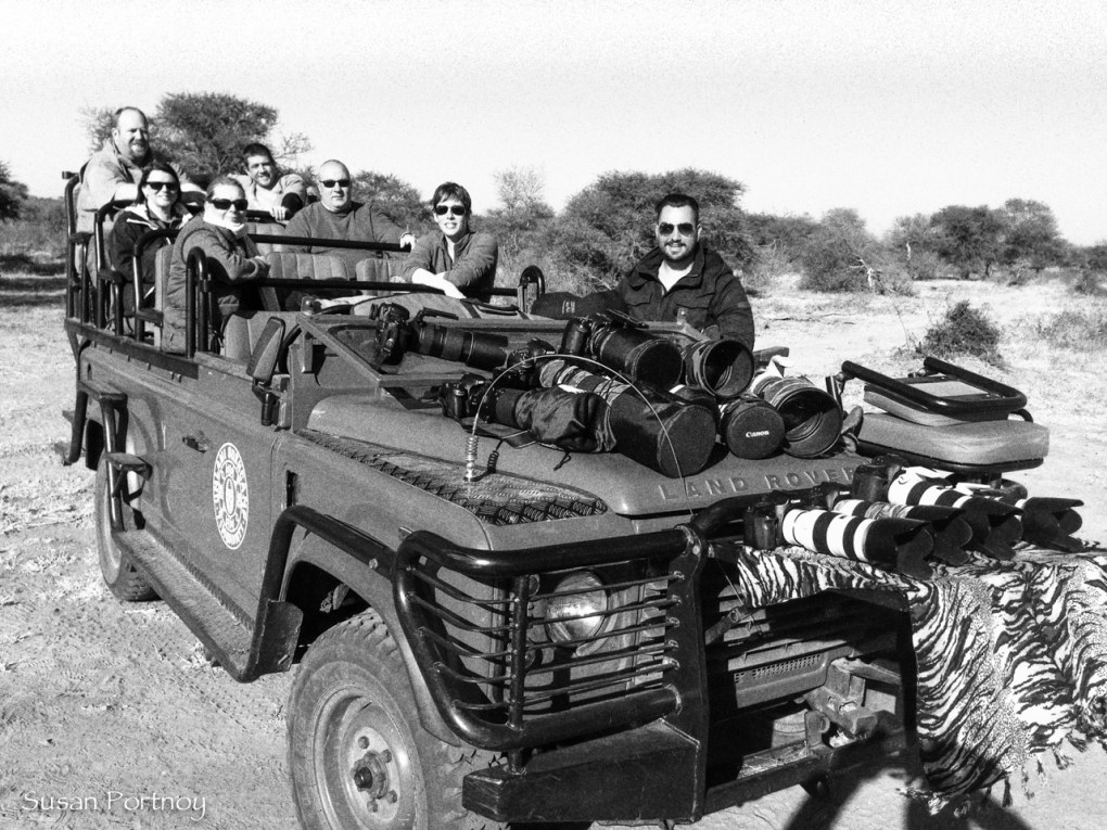 Wild Eye gang in Timbavati, South Africa