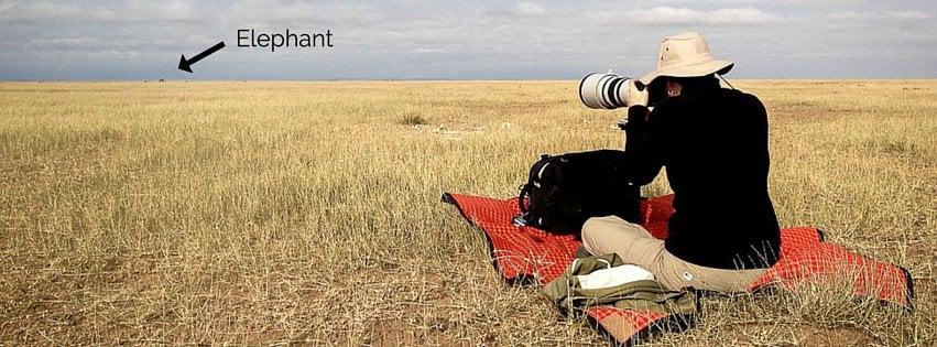 Susan Portnoy photographing an elephant in Amboseli, Kenya
