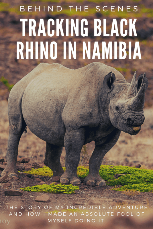 The story of my incredible adventure tracking black rhino on foot in the Palmwag Concession of Namibia, even though I made an absolute fool of myself doing it.