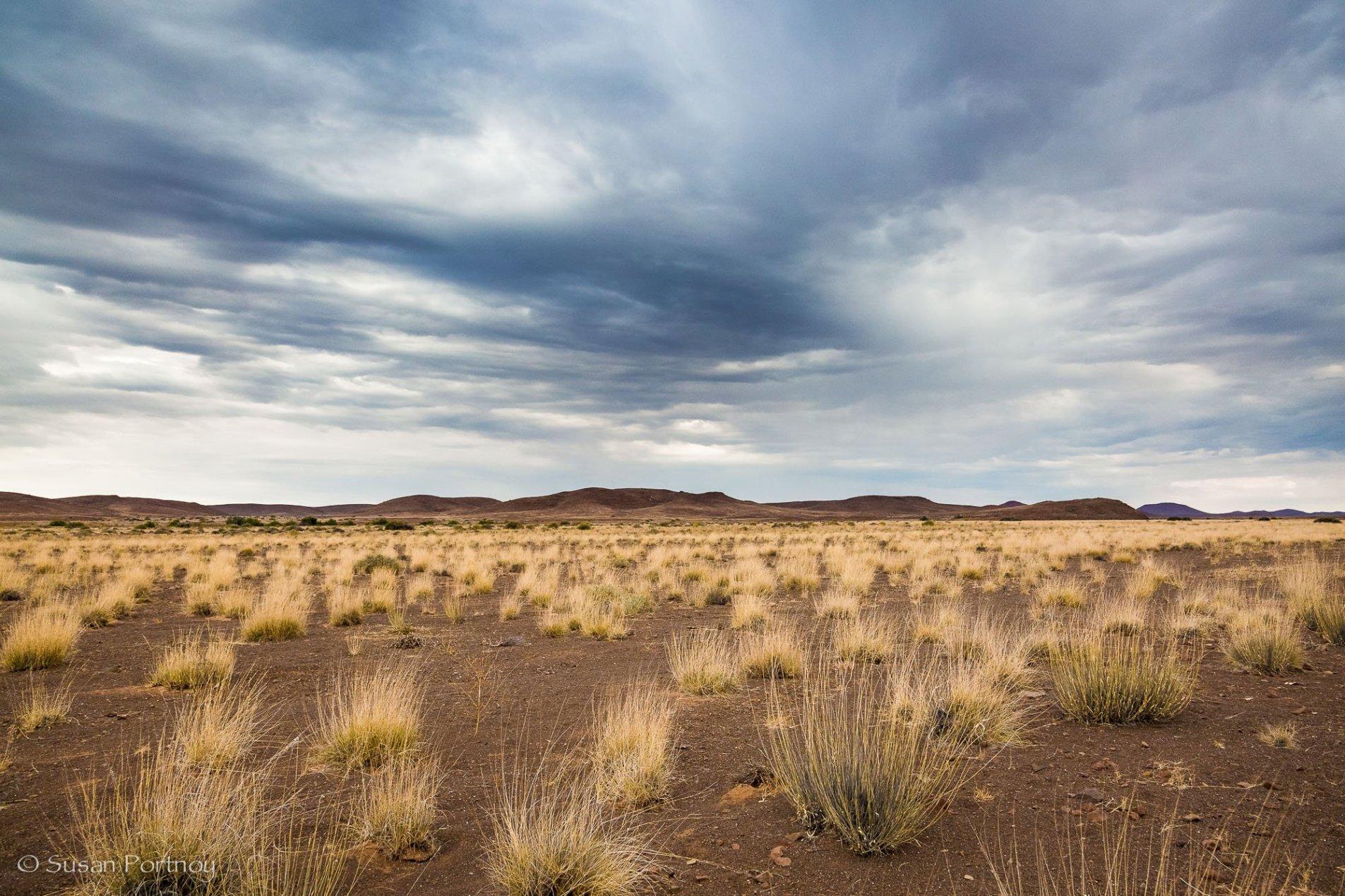 The rocky plains around Desert Rhino Camp in Namibia