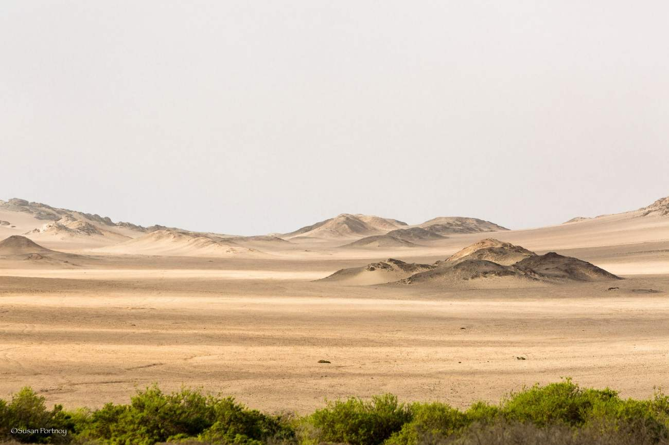 Dunes on the way to the Skeleton Coast