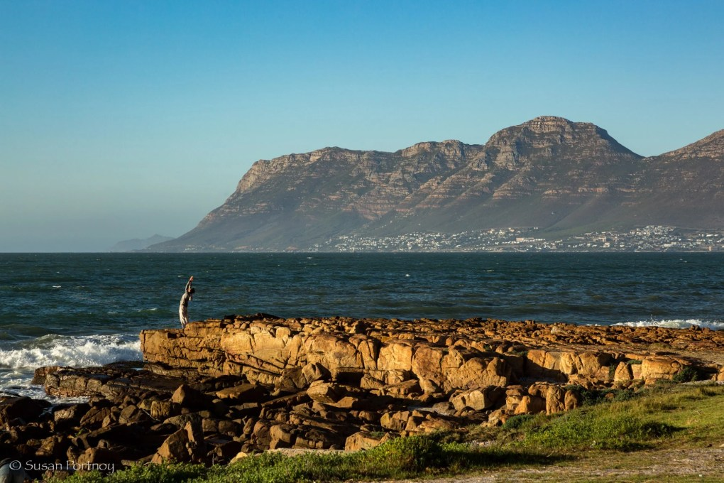 Man practices yoga at water's edge on Kalk Bay