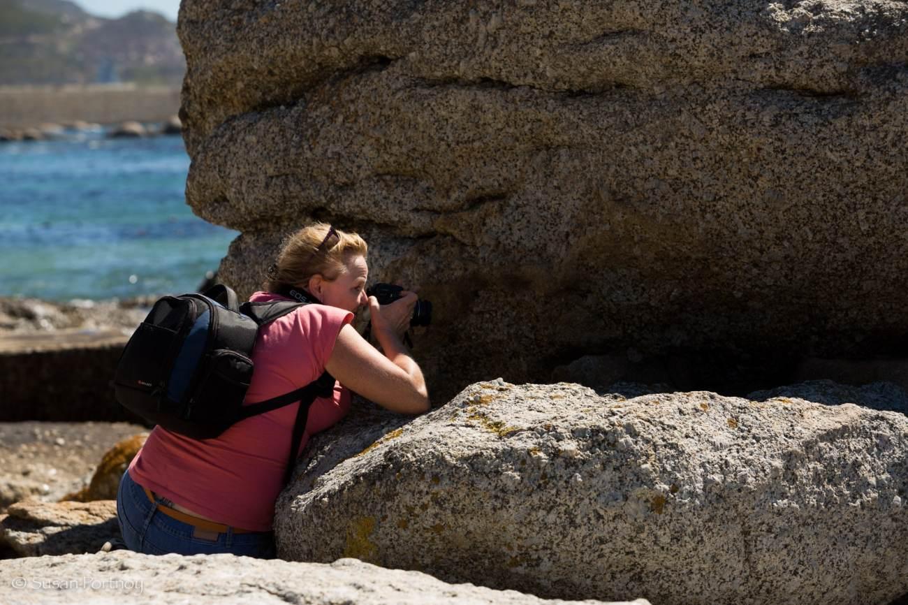 Karen taking a photo of a penguin