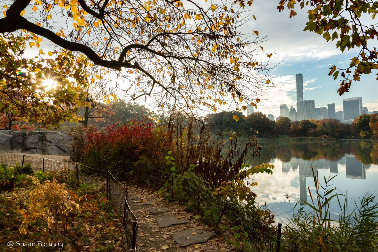 Path leading to the Hernshead in Central Park, New York