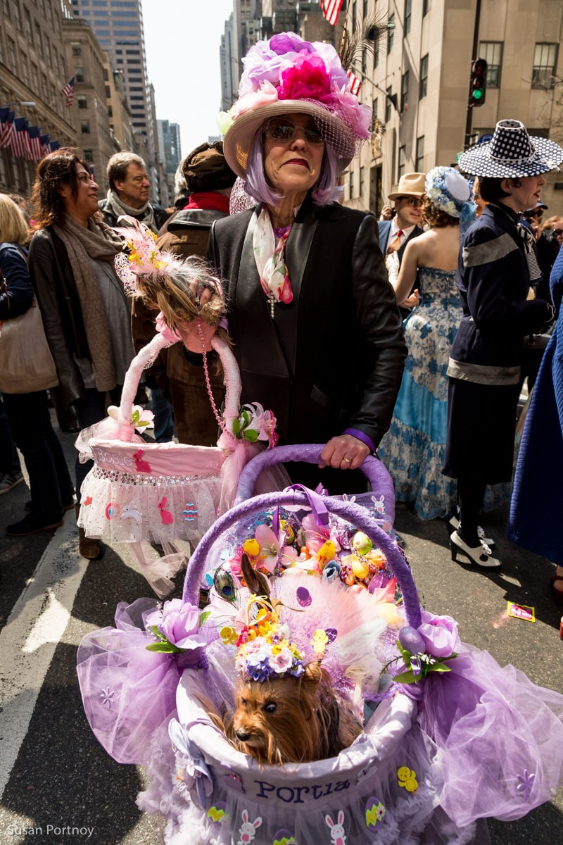 Woman with two dogs wearing easter hats at Easter Parade in New York City 2016