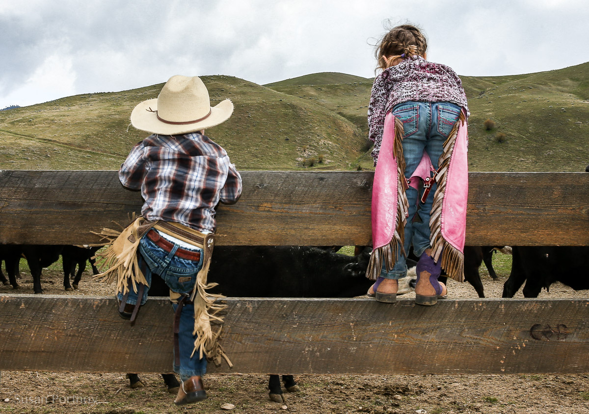 Two little cowboys climbing a fence in Montana