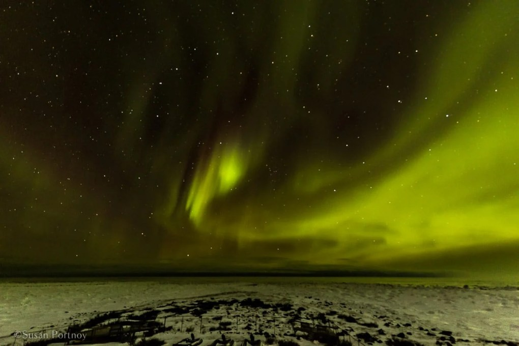 Chasing the Northern Lights from Above and Below-8691
