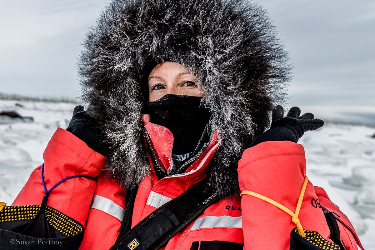 Susan Portnoy The Insatiable Traveler | What it's like to be on Canada's only Walking Polar Bear Photo Safari