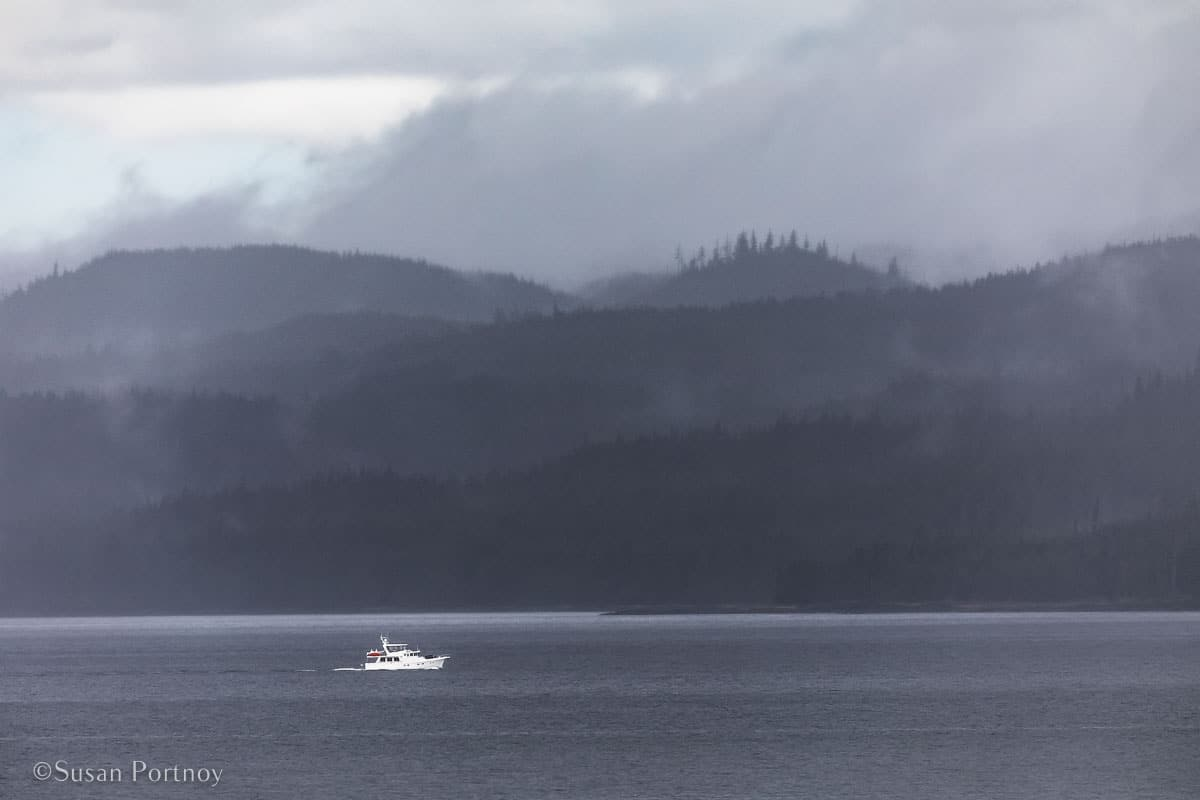 I took this photo one morning from my veranda. I just loved the moodiness of the fog and mist. - - Lessons on an Big Ship Alaskan Cruise-187820180607