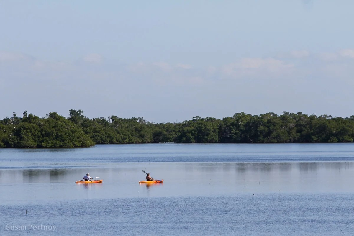 Canoers on Tarpon Bay--Best Guide to the Ding Darling Wildlife Refuge on Sanibel Island