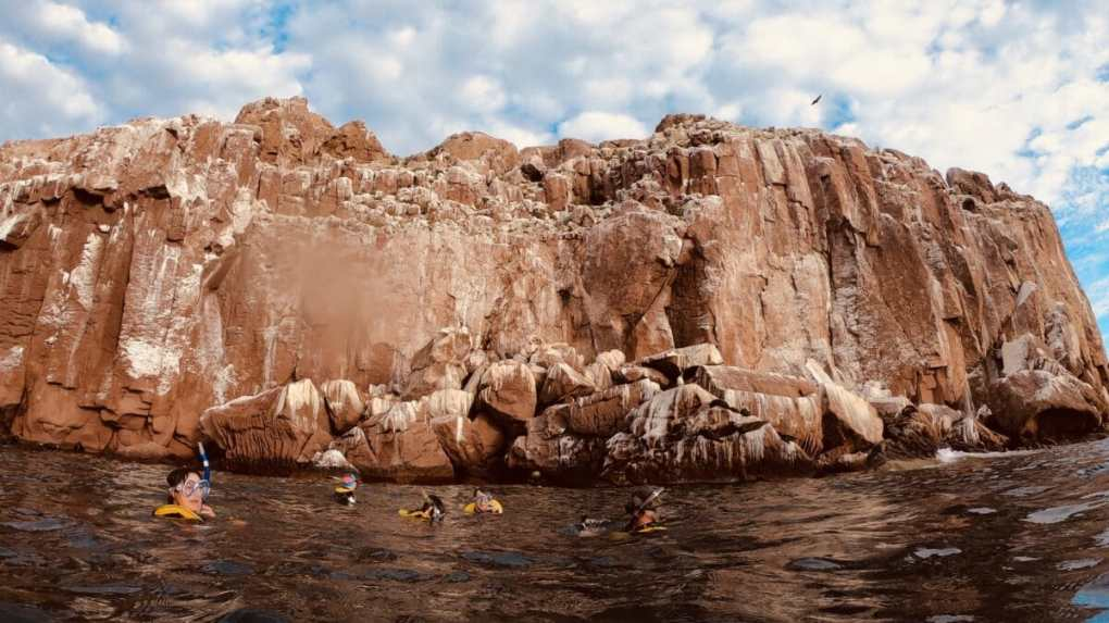 Los Islotes near Isla Espiritu Santos?