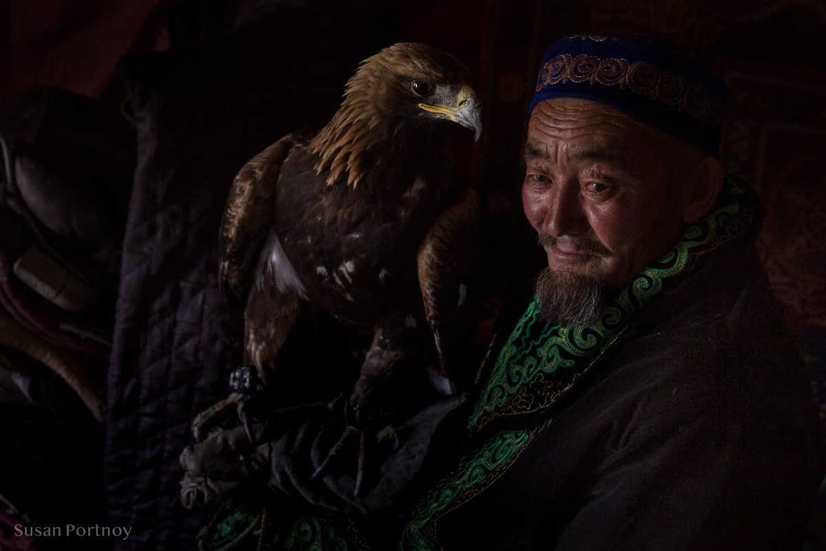 Sitting portrait of an old Kazakh man who is an eagle hunter with his golden eagle, Altai Mountains, Mongolia