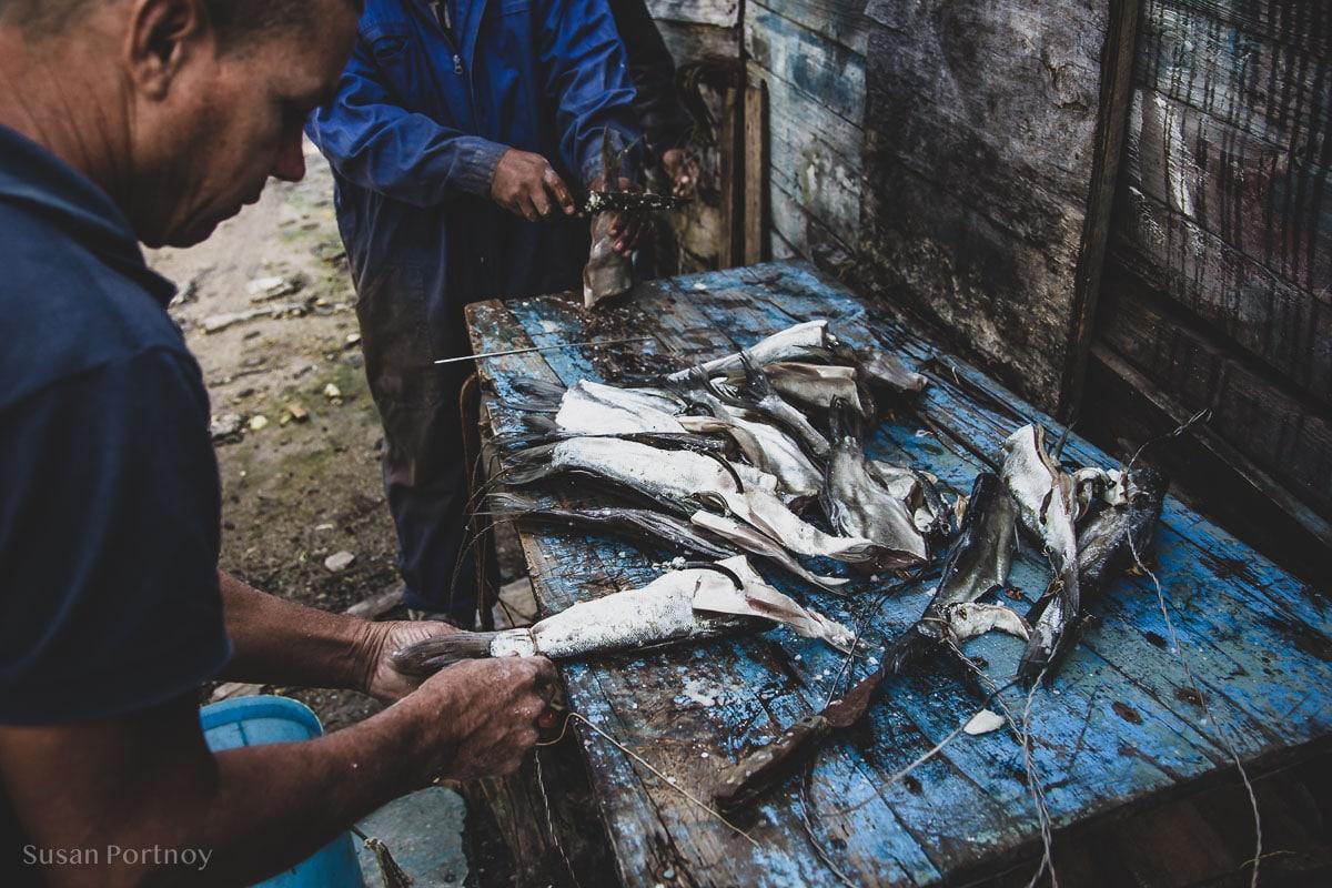 Men creating fish bat in Cojimar, Cuba