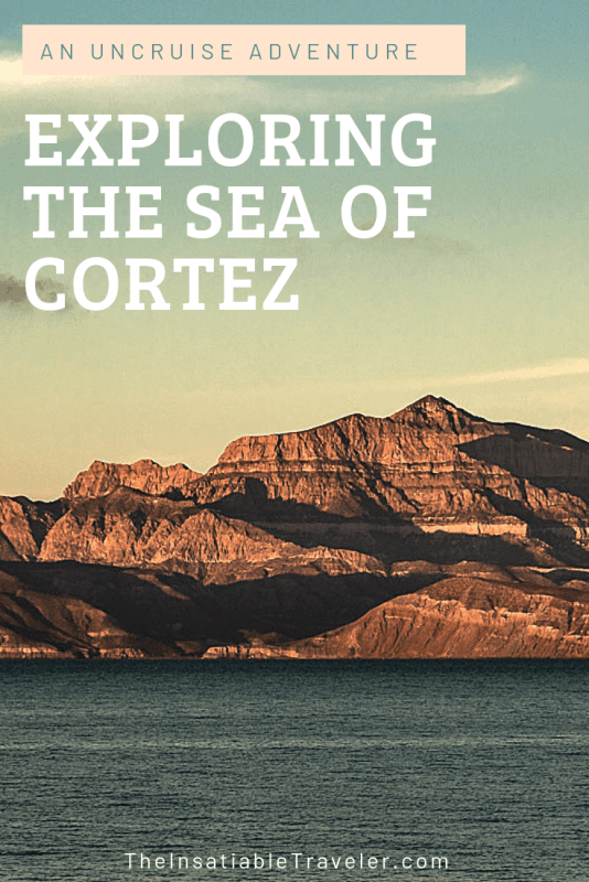 My exciting UnCruise adventure in Baja Mexico's Sea of Cortez. A small boat cruise offering nature and wildlife excursions in remote locations.