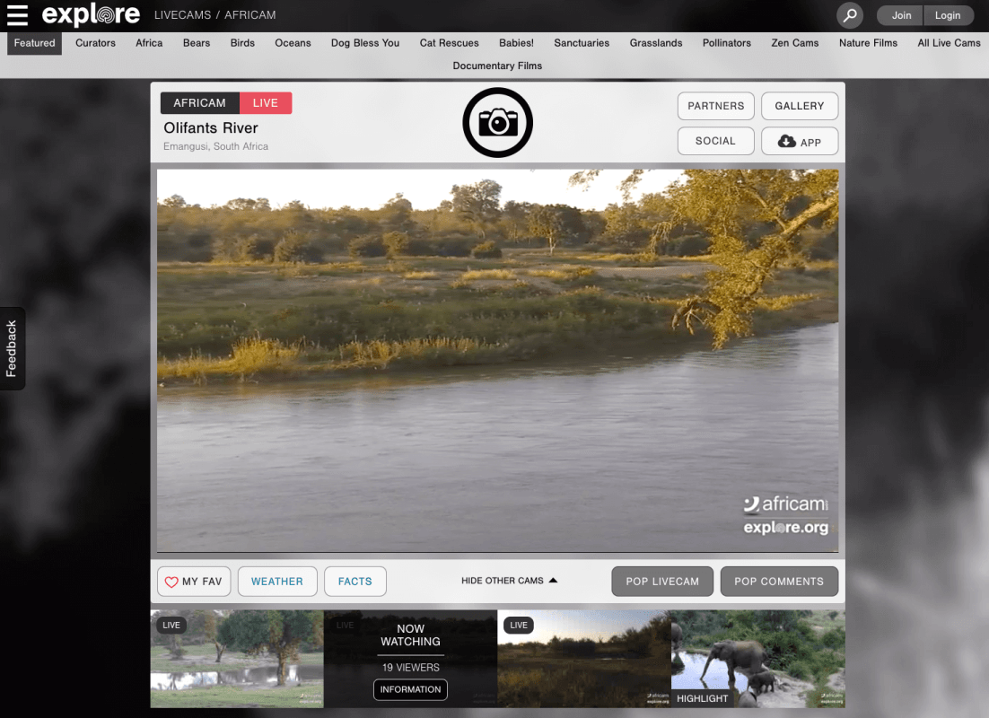 Explore.org African Cams