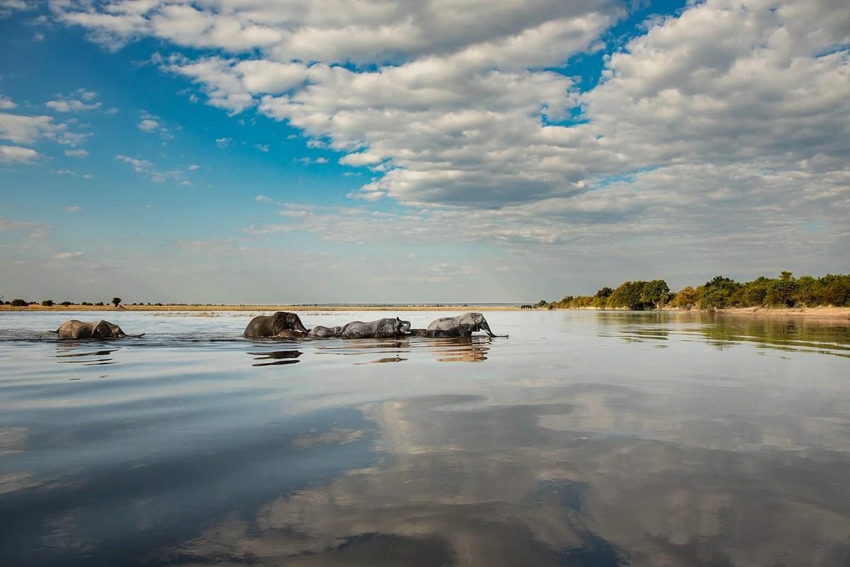 Beautiful Botswana Landscape