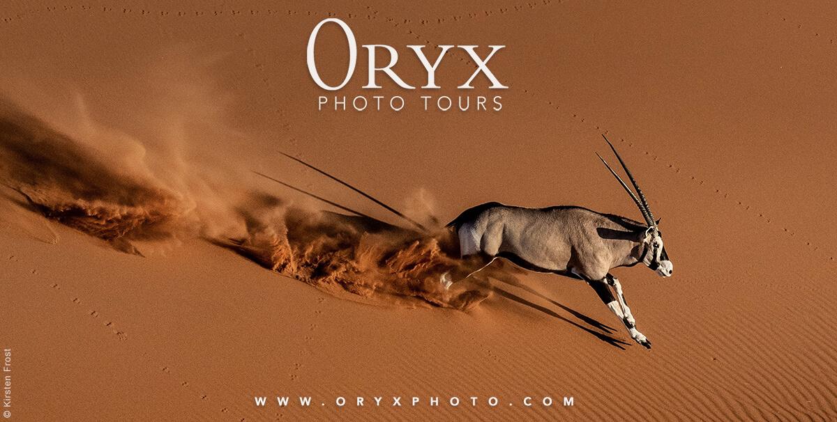 Oryx Photo Tours: African Photo Safaris