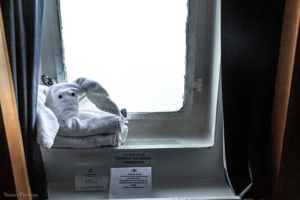 The window in my cabin on the Ocean Endeavor with a origami towel elephant on the windowsill