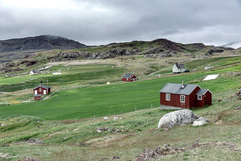 Rolling green hills and red buildings in a landscape view of Qassiarsuk in Greenland.