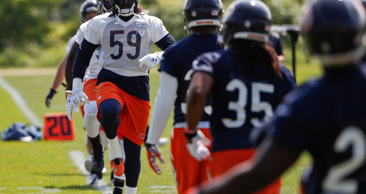 Chicago Bears LB Danny Trevathan
