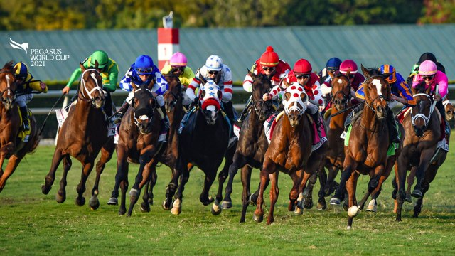 Pegasus World Cup Live Stream 2021 reddit free streaming