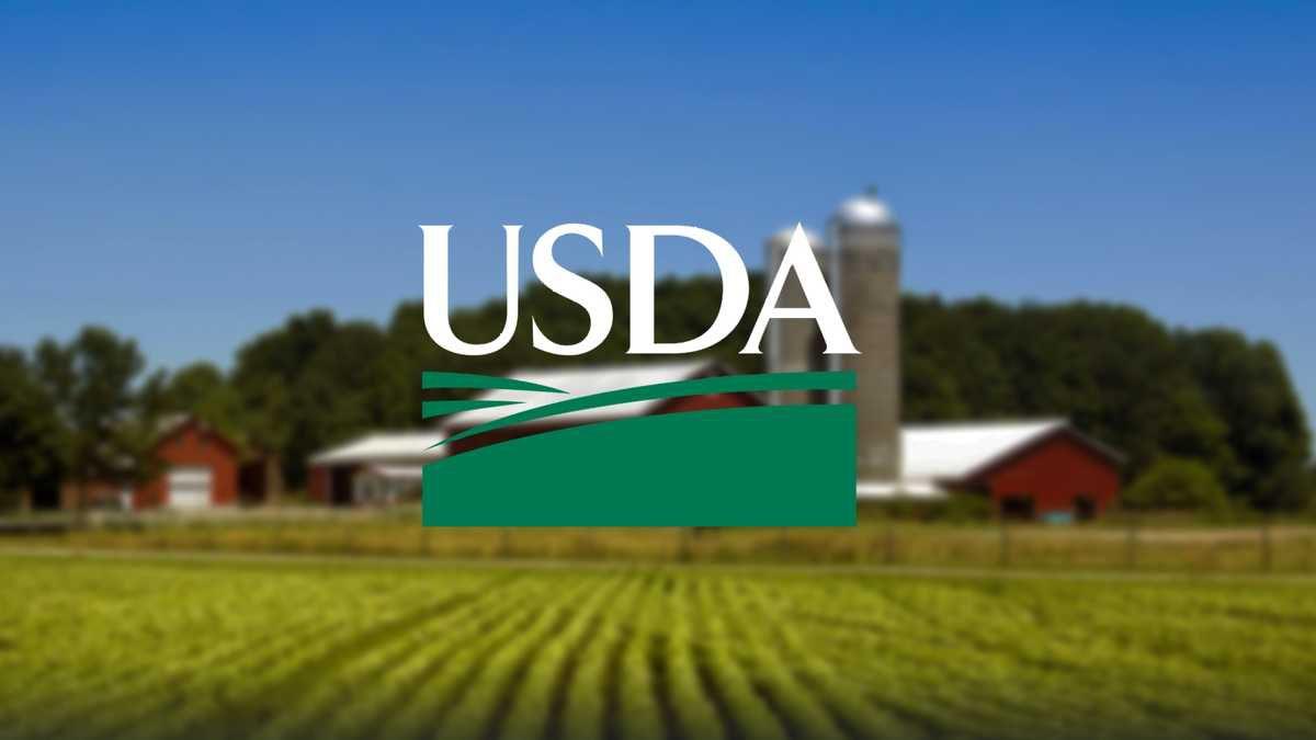 New USDA Guidelines