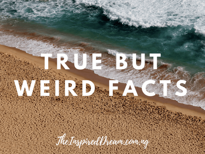 11 Amazingly true but weird Facts that would keep you stunned – No 4 and 9 are unbelieveable!
