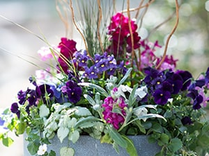 Container garden example The Inspired Garden Maplewood New Jersey