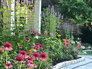 Home garden example The Inspired Garden Maplewood New Jersey