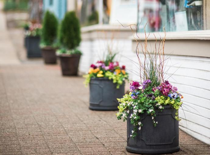 example of container gardens on sidewalk in front of store