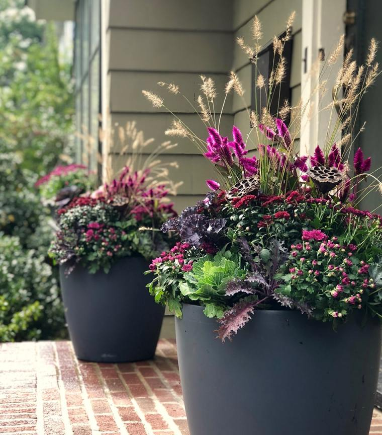 fall container garden example by Inspired Garden Maplewood New Jersey