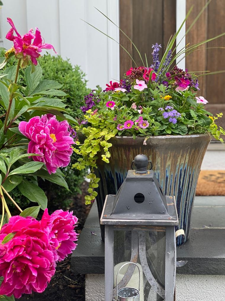 container garden example with flowers