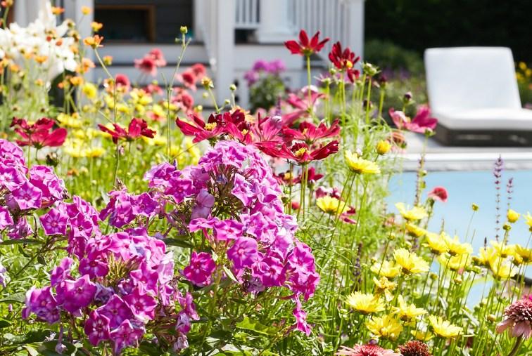 custom flower garden surrounding swimming pool