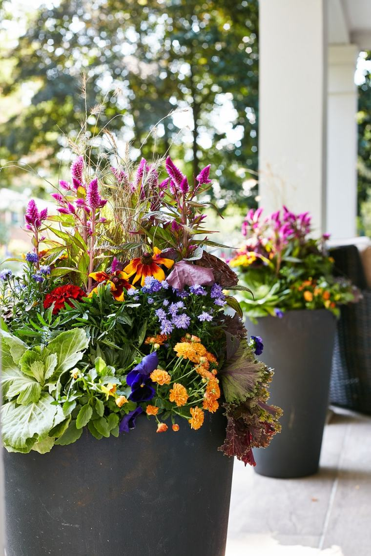 fall container garden at 307 South Ridgewood