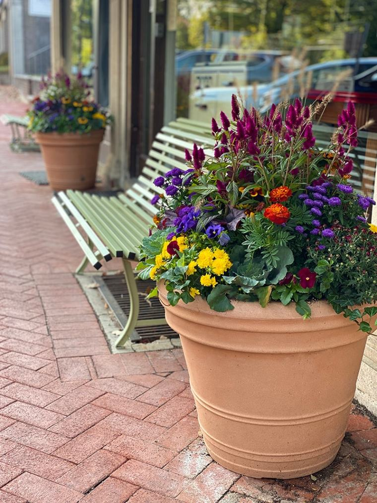 fall container garden in front of business Maplewood New Jersey