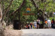 Visit La Arboleda Inspired Packer